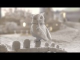 Katie Melua - Perfect World (Official Video)