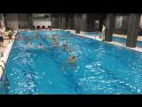 Дружеский матч по водному поло