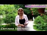 Отзыв о работе иллюзиониста Анатолия Корякина | Светлана Хвостова