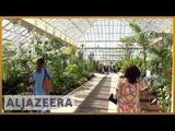?? Worlds largest Victorian glasshouse reopened in London | Al Jazeera English