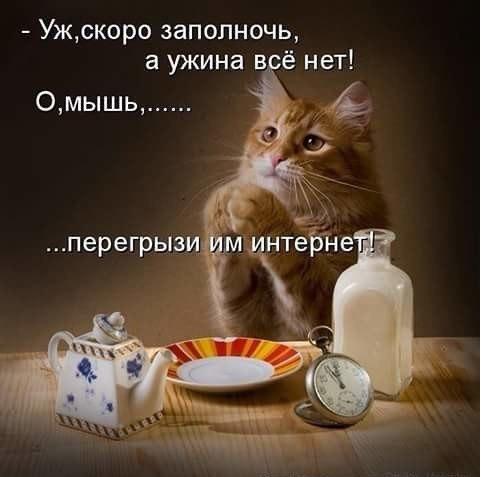 https://pp.userapi.com/c543103/v543103722/1fba2/o0t-SzAqex0.jpg
