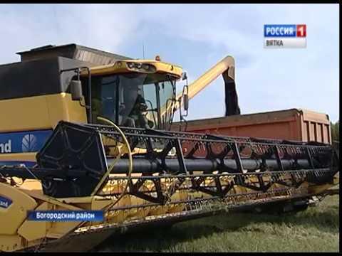 В Куменском районе началась уборка рапса(ГТРК Вятка)