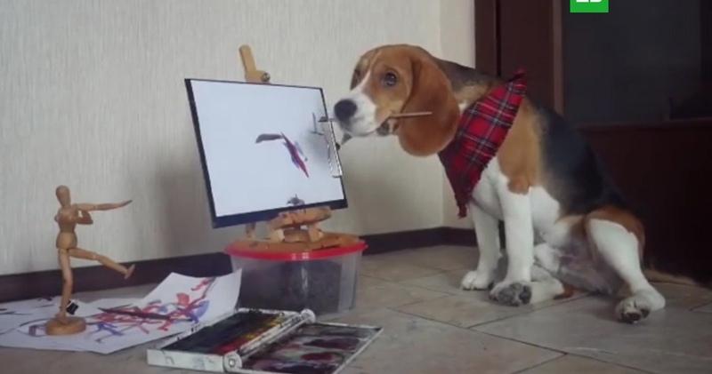 Рисующий щенок из Петербурга становится звездой в социальных сетях