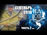 Рыбалка в Волгограде. НаВоде. Сентябрь. Дон