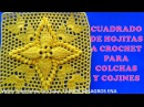 Cuadrado a crochet Hojitas en Relieves combinado con punto Popcorn paso a paso para colchas