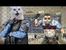 Dmitry Woland МАНЬЯК ЗАСТРЯЛ В НЫЧКЕ-ЛОВУШКЕ -- Угарный маньяк в CS GO