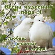 Весна чудесная пора!!!