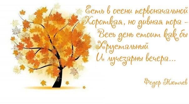 http://cs418731.userapi.com/v418731250/504/5H1FSHCk744.jpg