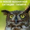 Соционическая встреча в Минске, 23 марта