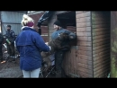 Gorilla takes on 4 people