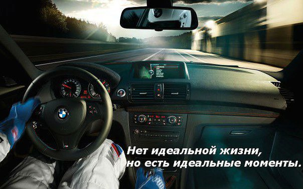 Фото №456247015 со страницы Алены Филипенко