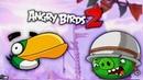 ЗЛОЙ ЗЕЛЁНЫЙ ПТИЦ ХЭЛ против СВИНТУСОВ! Мульт игра про ЗЛЫХ ПТИЧЕК Энгри Бердс Angry Birds 2