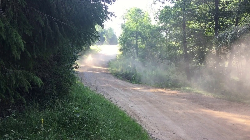 Rally Estonia 2018. Georg Gross close call on SS2 «Arula».
