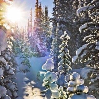 Зима... Морозная и снежная, для кого-то долгожданная, а кем-то не очень любимая, но бесспорно – прекрасная.  Dx8m7TJcpmg