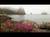 Rialto Beach La Push - Olympic National Park 4K UHD