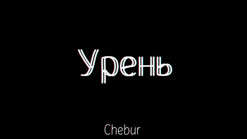 CHEBUR - Урень