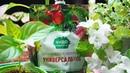 Удобрения творят чудеса Чудо плодородие в каждый дом!
