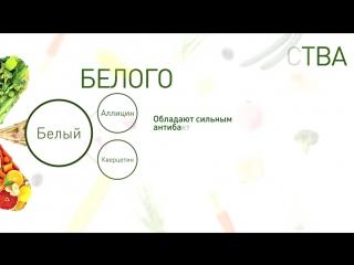Философия 5 цветов питания белый