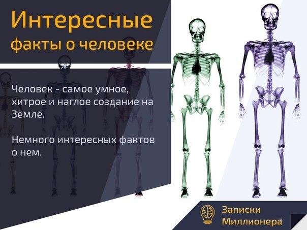 Интересные факты о человеке психология interesnye-fakty-o-cheloveke-psihologija_1jpg