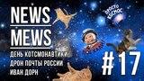 News Mews #17. День КОТсмонавтики