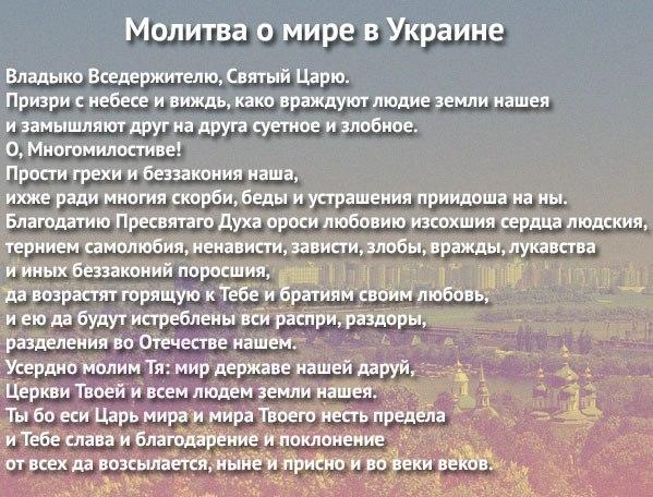 http://cs608323.vk.me/v608323228/2742/q_Jvzbe_Erc.jpg