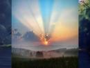 Рикки Кинг - Дом восходящего солнца