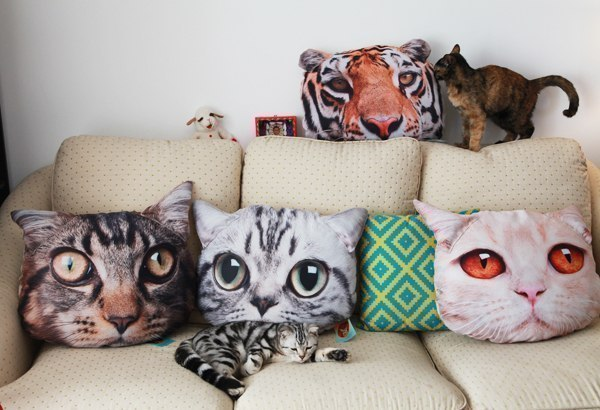 Дома для кота своими руками