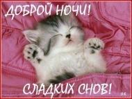 Доброй ночи! Сладких снов!