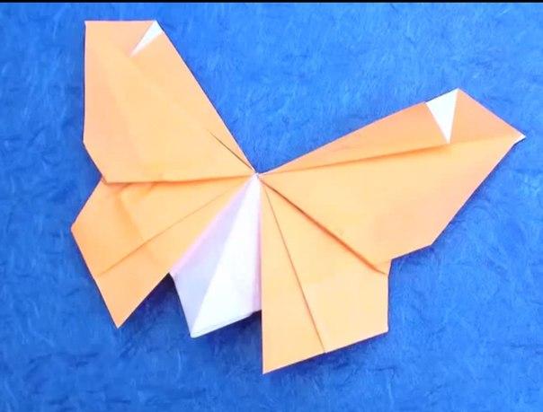 Решебник по алгебре 8 класс теляковского 2007