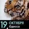 """Акция """"Животные - не одежда"""" Одесса"""