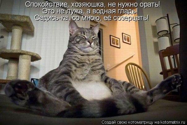 http://cs315423.userapi.com/v315423820/50ff/6lL9AMarG2g.jpg