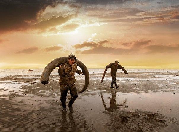 Немного о новостях культуры: фильм об искателях бивней мамонта получил