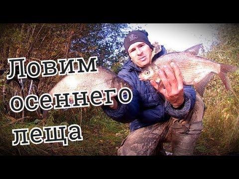 ЛОВИМ ОСЕННЕГО ЛЕЩА. Праздничная ночь на берегу реки - Болен Рыбалкой №556