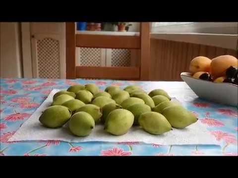 Деревья целители-Маньчжурский-Грецкий орех