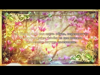 40 забытых сунн Посланника Аллаха (ﷺ)_HD.mp4