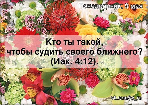 Исследуем Писания каждый день 2016 - Страница 5 LDHHgMWA-aU