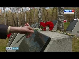 Ничего святого - в Перми с могил солдат украли венки