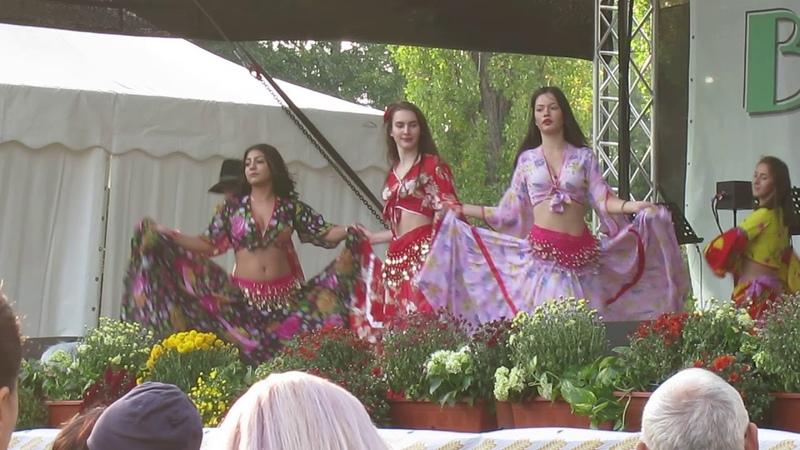 Румыния Бухарест Праздник Урожая Цыганские народные песни и танцы Часть 2