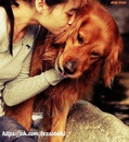Самая необычная и необъяснимая любовь-это любовь к собаке. Мы любим её просто за то…