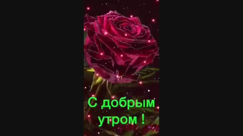 230430870853668