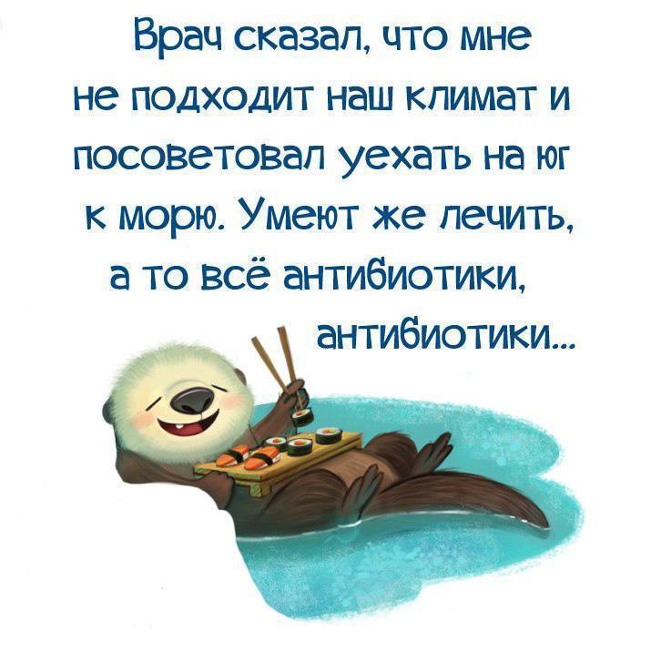 https://pp.userapi.com/c543100/v543100567/30bfb/W0R2NilJyDs.jpg