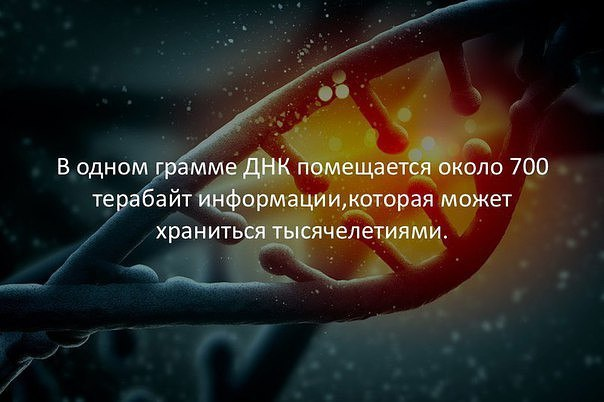 Фото №456258168 со страницы Дмитрия Ершова