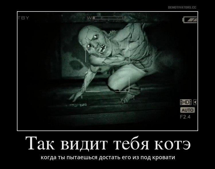 Жили пресс до и после фото мужчины июня повез Ольгу