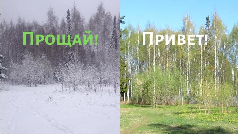 Провожаем весну, встречаем лето! Бело-зеленый выпуск