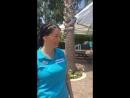 Crystal Paraiso Verde Resort Spa - интервью с гостями. Часть 1