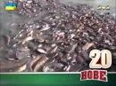 Шалене відео по-українськи 2014 Сезон 4 Випуск 118, Улётное видео по-украински