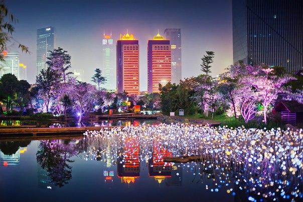 Китай, Гуанчжоу ночью.