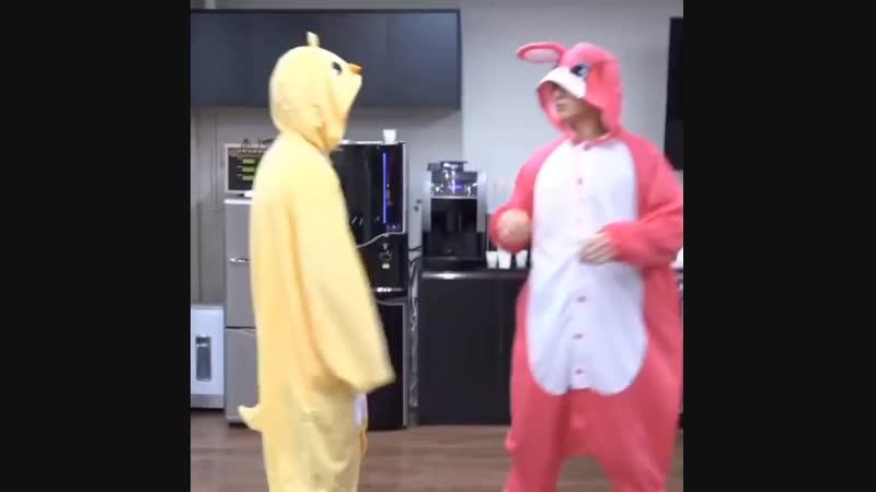 Кролик и Ципа