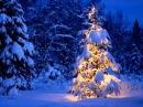 Скрябін - З Новим роком і Рождеством