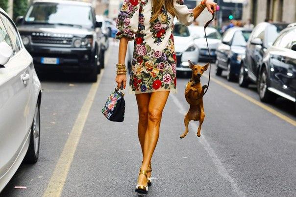 Платья а-силуэта обожала Твигги, а теперь любят Миучча Прада и Стелла Маккартни, и вообще это лучшая одежда для лета: лаконичная, комфортная и женственная. Мы нашли 10 красивых вариантов в онлайн-магазинах на любой бюджет